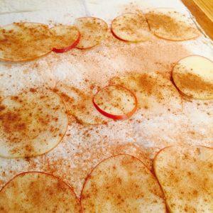 Jablkovo škoricová Štrúdľa s gaštanovým pyré a čučoriedkami IMG_9437